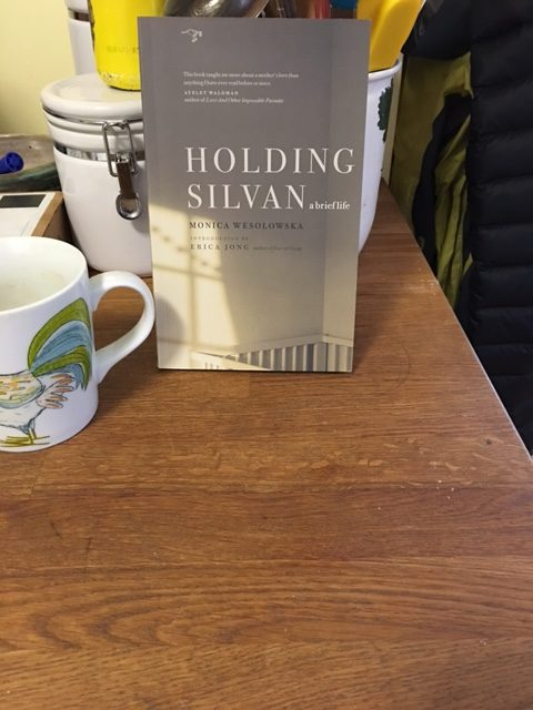 Beautiful Book You Must Read: Holding Silvan, A Brief Life